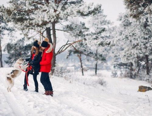 Will New FLSA Regulations Create Winter Storm On Pay?